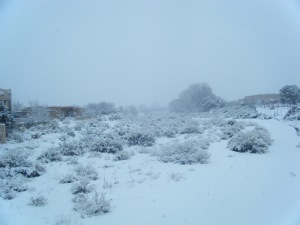 The Snow covered arroyo